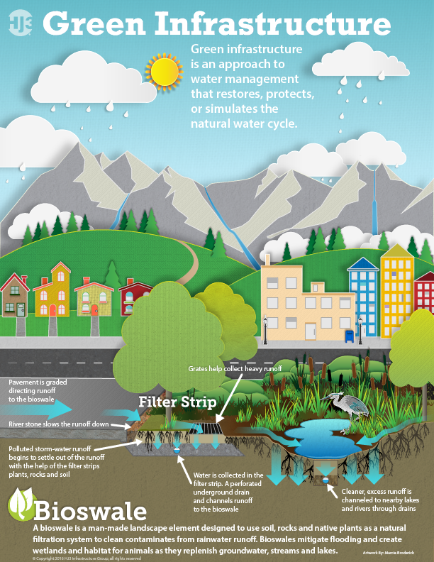 Bioswale and wastewater infographic