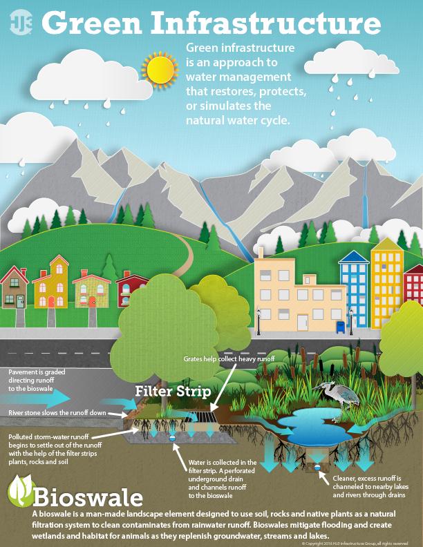 green infrastructure bioswale